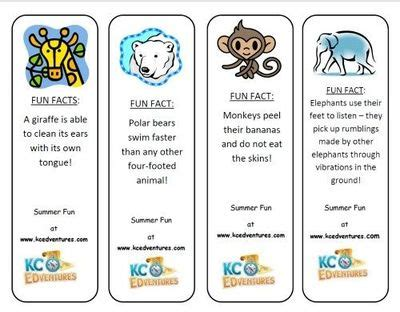 printable preschool bookmarks printable bookmarks with fun animal facts great to