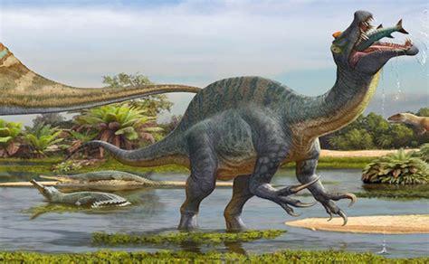 ricardo y el dinosaurio el dinosaurio carn 237 voro gigante spinosaurus se alimentaba como un pel 237 cano noticias sinc