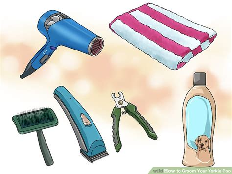 how to groom a yorkie poo at home how to groom your yorkie poo 10 steps with pictures wikihow