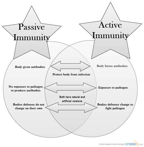 passive and active transport venn diagram active vs passive immunity venn diagram creately