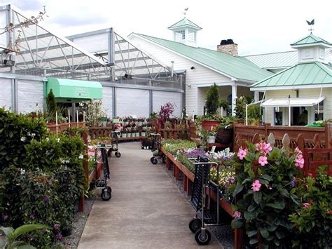 Garden Center Nc 17 Best Images About Selma Nc On Shops