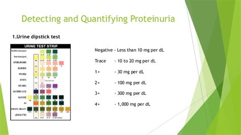 protein 1 in urine proteinuria in adults