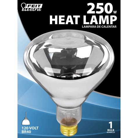 heat l bulb lowes shop feit electric 250 watt for indoor or enclosed outdoor