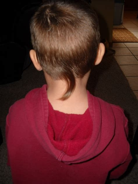 Rat Hairstyle by Rat Haircut Pictures Haircuts