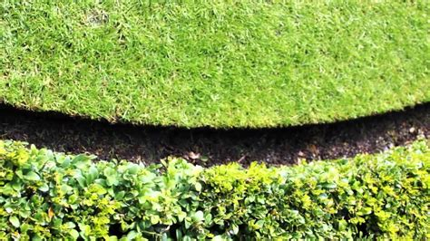 Garden Edging Traditional Lawn Edging