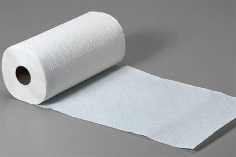 What To Make Out Of A Paper Towel Roll - everything you ve always wanted to about paper towels