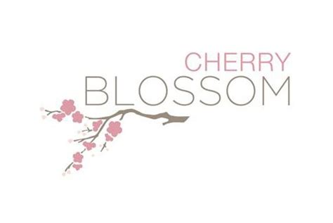 new year cherry blossom meaning cherry blossom in san jose new townhomes by