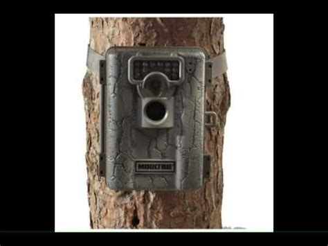 moultrie a 5 5mp low glow infrared game camera reviews