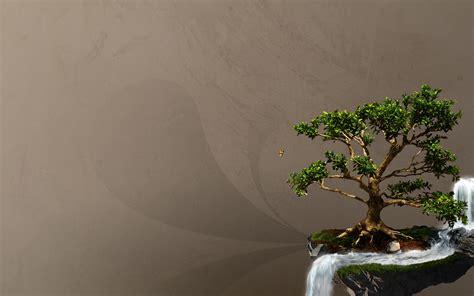 imagenes de arboles zen wallpapers bons 225 is el blog de iyan