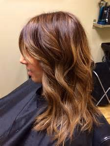 honey hair color chestnut honey hair color brown hairs