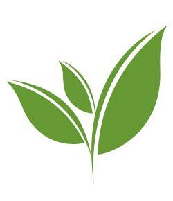 tealeaf   here's a happy little tea leaf i drew (inspired