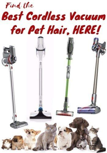 cordless vacuum  pet hair  recommendations