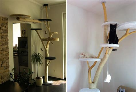 stylish cat tree banish the ugly beige carpet check out stylish cat tree banish the ugly beige carpet check out
