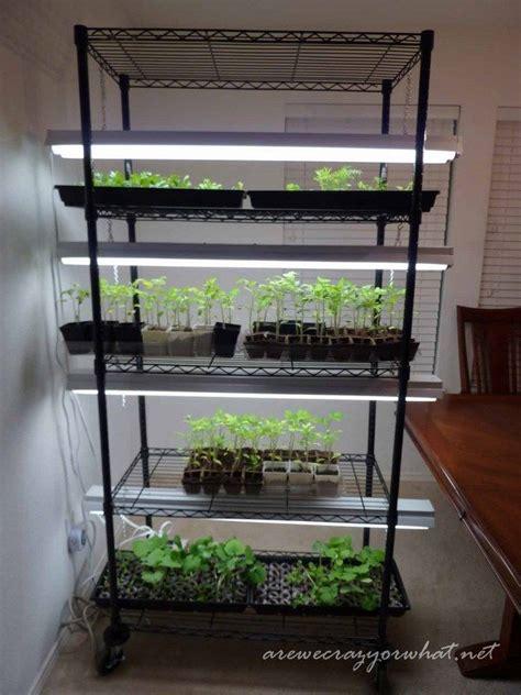 building  seed growing rack   cheap shelves