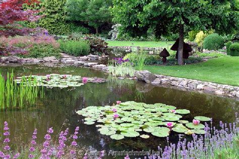 giardini acquatici giardini acquatici