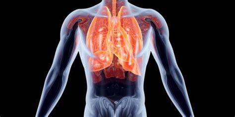 tips mudah menjaga kesehatan paru paru merdekacom