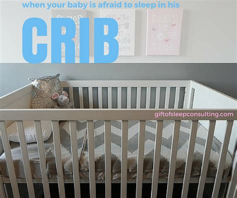 My Baby Is Chewing On His Crib Baby Chewing On Crib My Baby Is Chewing On His Crib