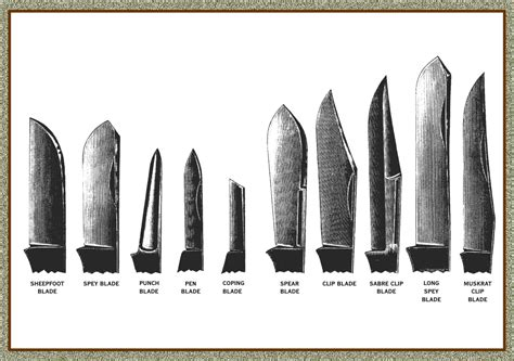 knives types knife terminology great eastern cutlery