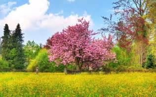 Spring Landscape Gallery For Gt Spring Landscape Photo