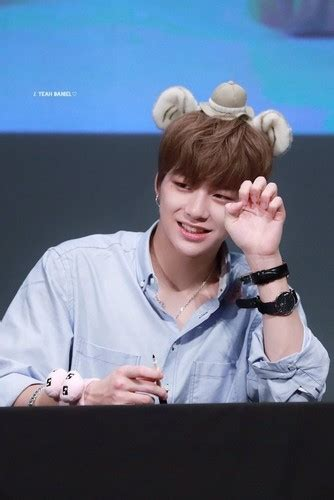 wallpaper hd wanna one wanna one images daniel hd wallpaper and background