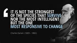 It Is The Most nor the most intelligent but the one most responsive to change