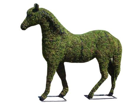 animal topiaries for sale garden topiary frame