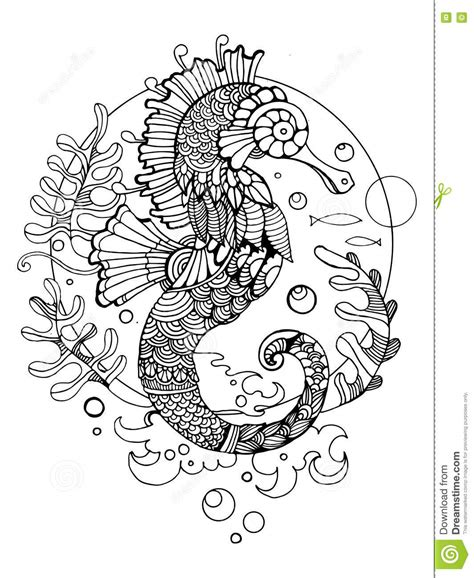 z coloring book for and adults 40 illustrations books sea coloring book for adults vector stock vector