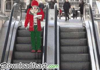 funny prank gifs find share  giphy