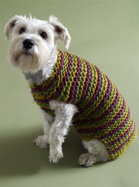 free crochet pattern for a dog coat top 5 free dog sweater knitting patterns loveknitting blog