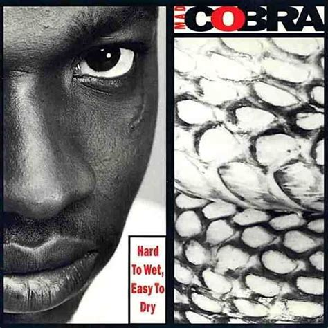 mad cobra flex mp3 download hard to wet easy to dry mad cobra last fm