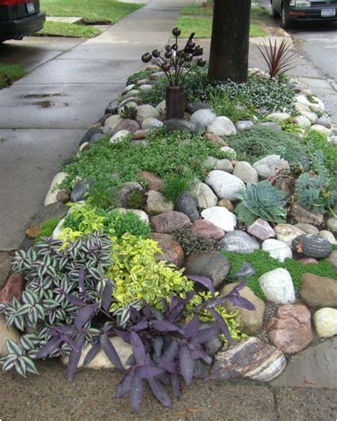 giardini con piante grasse nei giardini rocciosi le piante grasse ed i fiori regnano