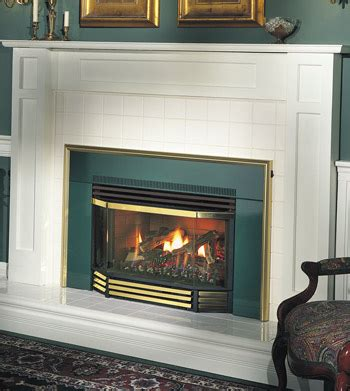 Napoleon Gas Fireplaces Reviews by Napoleon Gi3600 Vent Gas Fireplace Insert Gi3600