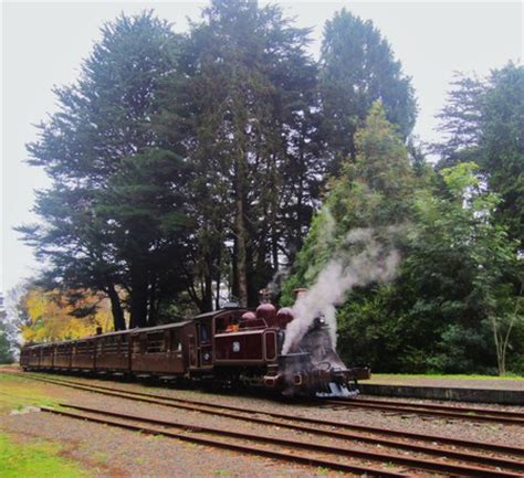 the puffing billy @ gembrook railway station melbourne