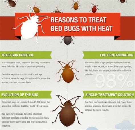 what temp kills bed bugs how to get rid of bed bugs with heat treatment howsto co