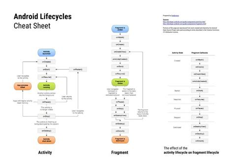 android fragment lifecycle activity lifecycle exle android