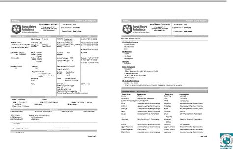 patient care report template sle