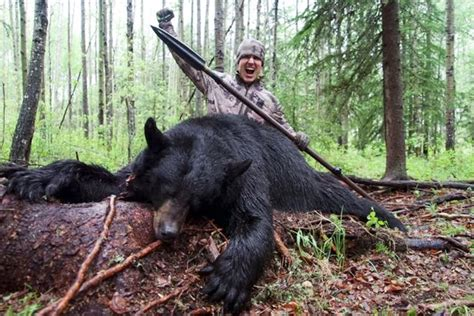 how to hunt with a spear hunters in sick new low as black is stabbed with 7ft