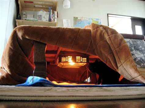 kotatsu bed winter in japan kotatsu nabe and kaiseki travel 4 the soul