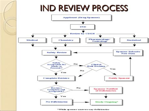 ind template ind application template ind application process and best