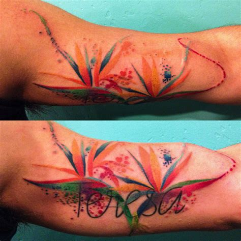 watercolor tattoo names i finally added some watercolor birds of paradise flowers