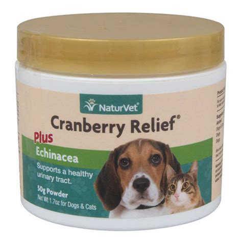 cranberry supplements for dogs buy naturvet cranberry relief powder 50 gm for dogs and cats
