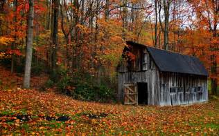 Barn Weddings In Va Red Barn In Autumn Forest Wallpaper Wide Wallpaper