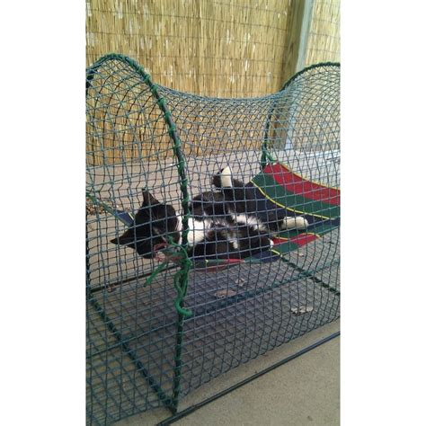 Kabana awning and hammock kittywalk 174 portable outdoor cat enclosure pelsb 216 rn