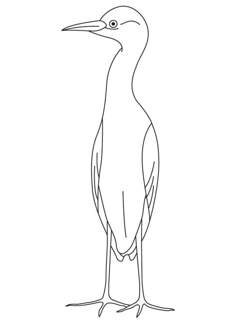 egret color small egret coloring page free small egret coloring page for best coloring pages