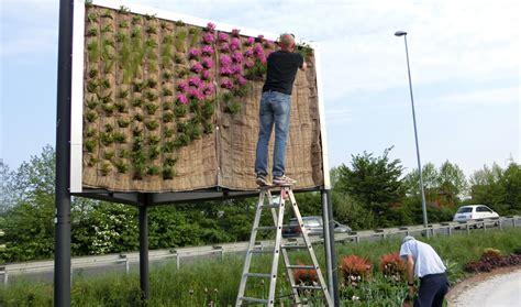 realizzazione giardini pensili giardini pensili e verde verticale il germoglio