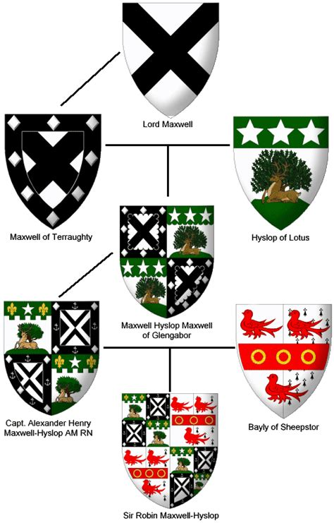 the complete book of heraldry an international history of heraldry and its contemporary uses books maxwell heraldry