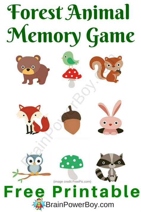 printable animal memory game animal and nature games for kids conguivol mp3