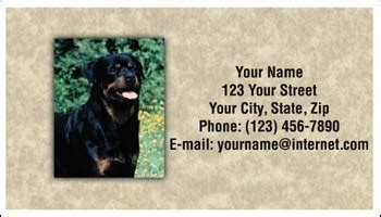 rottweiler personal checks rottweiler identity cards