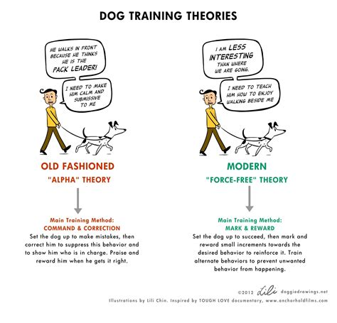 dog house training methods behavior training resources greater st louis training