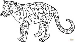 Click The Leopard 27 Coloring Page To View Printable Version Or Color  sketch template